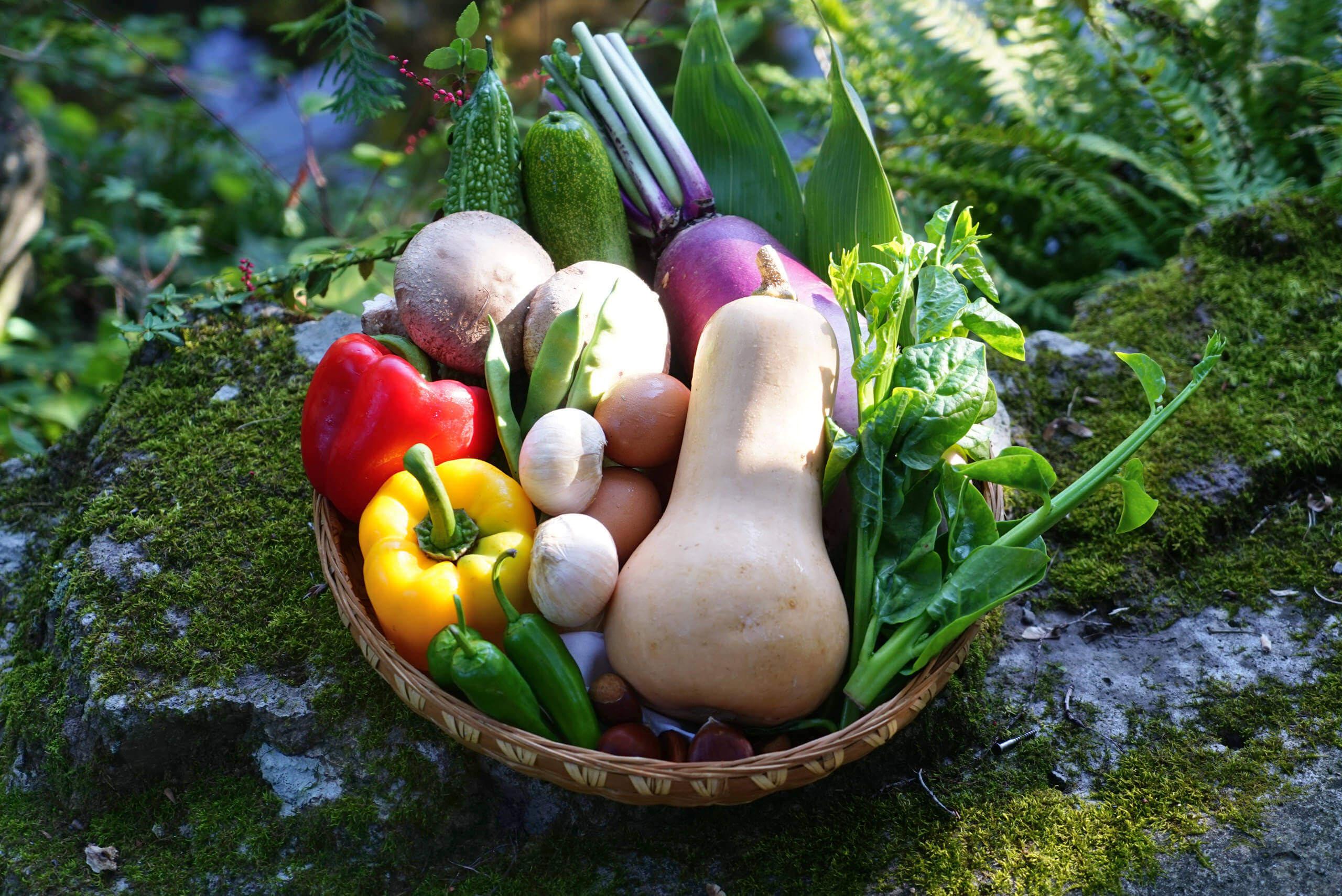 通年-籠に盛った野菜